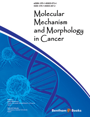 Molecular Mechanism and Morphology in Cancer