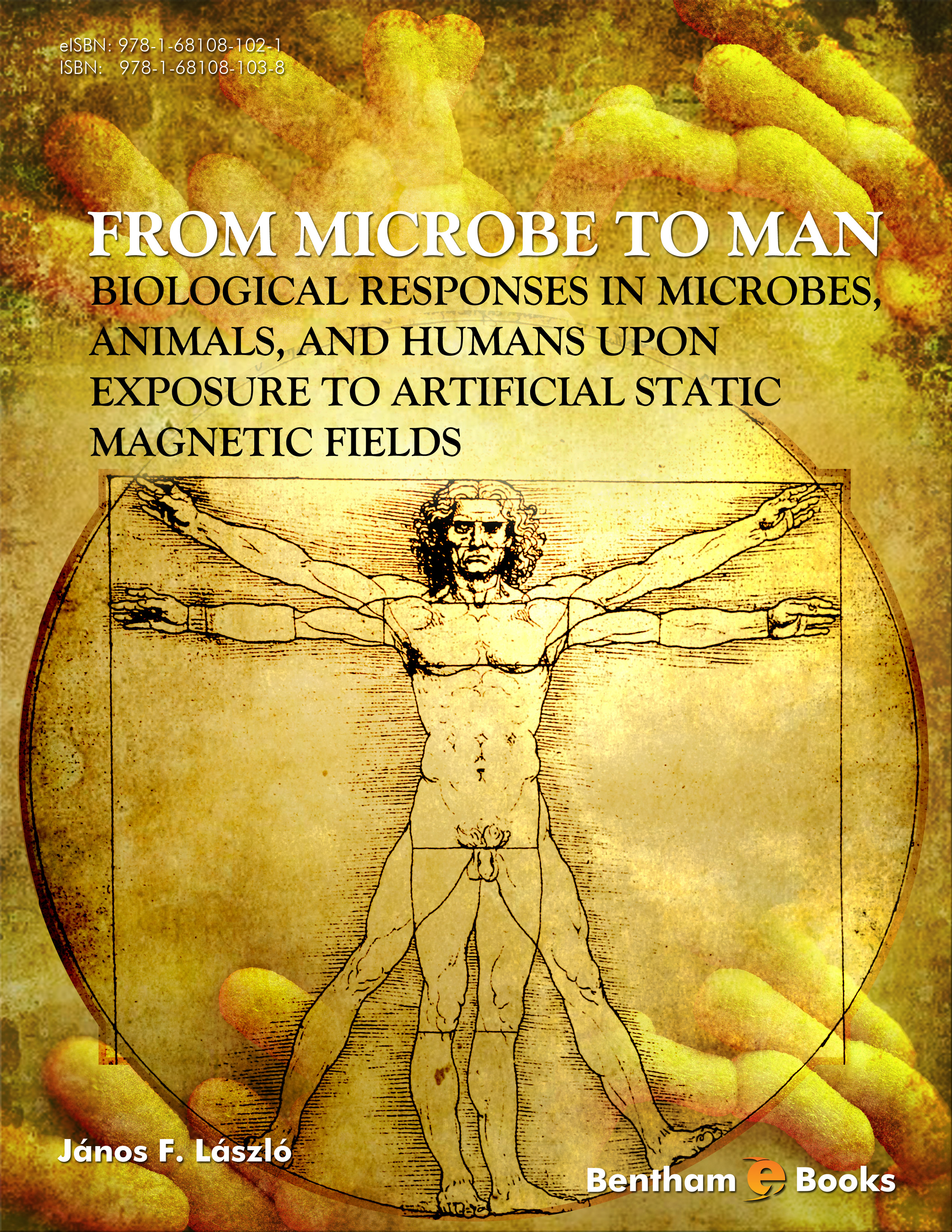 From Microbe to Man: Biological Responses in Microbes, Animals, and Humans Upon Exposure to Artificial Static Magnetic Fields