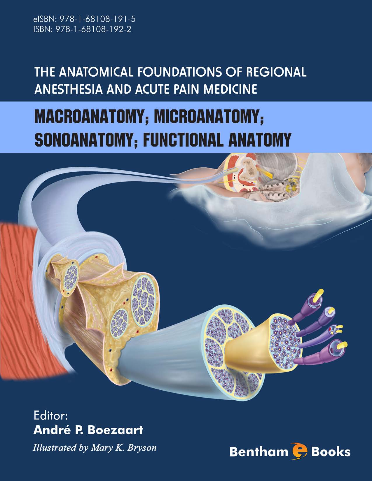 The Anatomical Foundations of Regional Anesthesia and Acute Pain Medicine