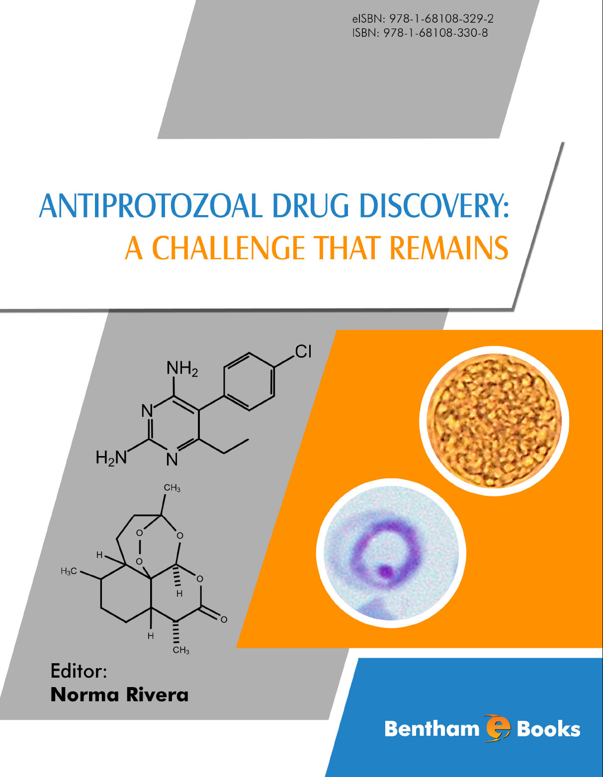 Antiprotozoal Drug Discovery: A Challenge That Remains