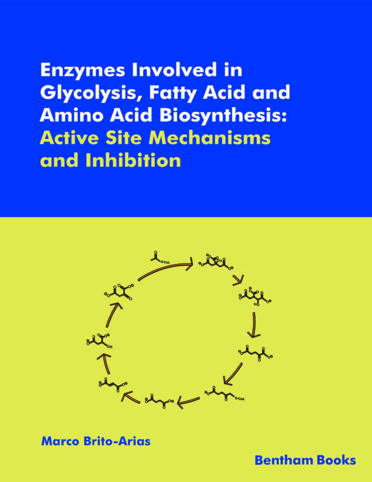 Enzymes Involved in Glycolysis, Fatty Acid and Amino Acid Biosynthesis: Active Site Mechanism and Inhibition